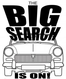 big-search-car-only